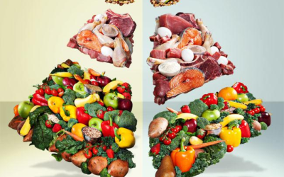 Diet Rules ~ 12 simple rules to follow
