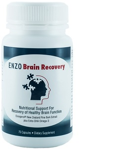 ENZO_Brain_Recovery_Large