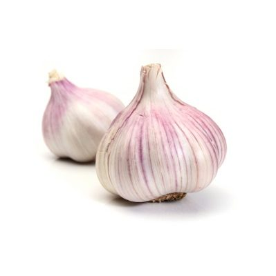 Two garlics over a white background